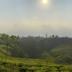 Mist Valley2019.4-180